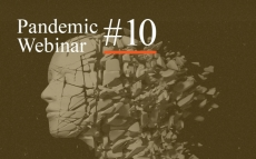 Pandemic Webinar #10: The Role of Public Intellectuals