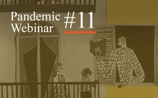 Pandemic Webinar #11: Public Narratives of Epidemic Outbreaks