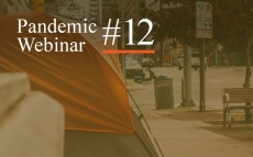 Pandemic Webinar #12: Social Justice and COVID-19