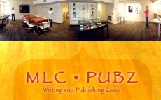 PUBZ Workshop — Writing support to prepare your thesis or dissertation