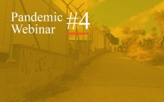 Pandemic Webinar #4: Diversity, Migration, and COVID-19